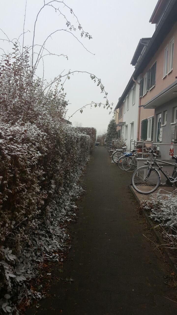 Frankfurt'ta kışın 9 ay sürdüğünü söylemiş miydik?