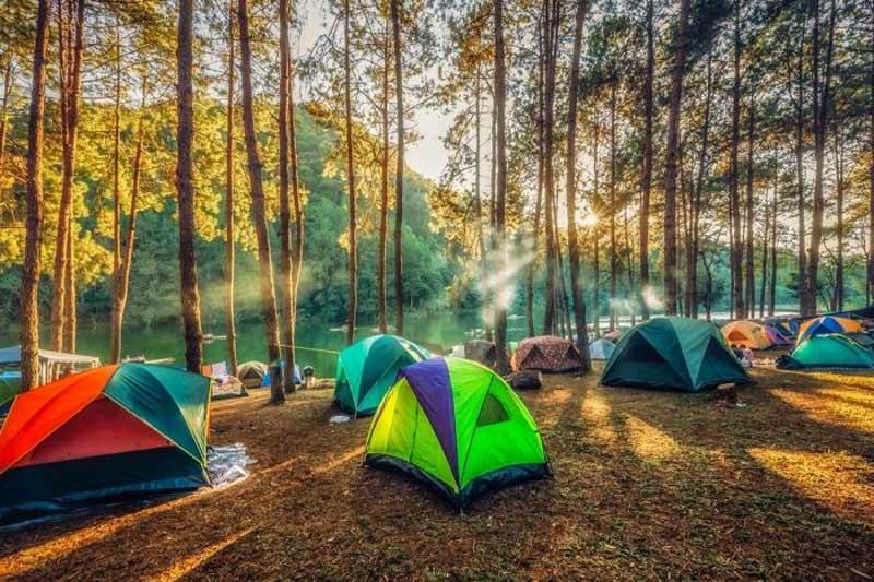 Yedigöller'de kamp yerleri